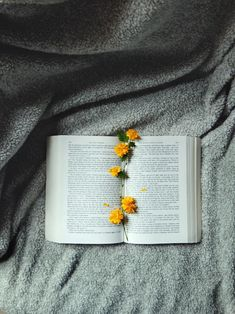 flowers make the best bookmarks ♥ - Best Book Recommendations 2019 Book Flatlay, Best Bookmarks, Book Flowers, Tea And Books, Book Aesthetic, Book Photography, Book Nerd, Bookstagram, Book Recommendations