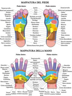 Foot Reflexology, Wellness Fitness, Yoga Fitness, Health Fitness, Mudras, Muscle Anatomy, Yoga Positions, Kundalini Yoga, Physical Therapy