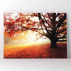 Autumn forest πίνακας σε καμβά Autumn Forest, Celestial, Sunset, Painting, Outdoor, Art, Outdoors, Art Background, Painting Art