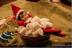 IMG_0536 Family Christmas, All Things Christmas, Christmas Holidays, Merry Christmas, Christmas Decorations, Xmas, The Elf, Elf On The Shelf, Holiday Fun
