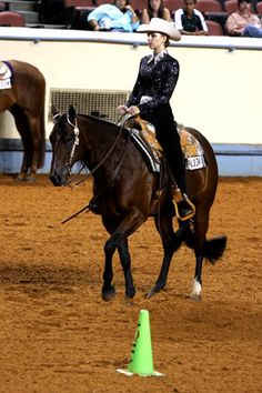 Spring Horse-Training Tip: Hone your simple lead changes. And the learning doesn't have to stop there. Check out http://americashorsedaily.com/ for more horse-training help!