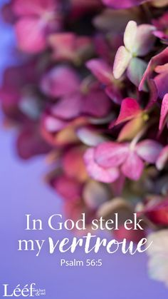Morning Motivation Quotes, Psalm 56, Inspiration For The Day, Thankful Quotes, Goeie Nag, Afrikaans Quotes, Encouraging Bible Verses, Love Me Quotes, Heavenly Father