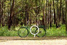 A empresa gaúcha murb reúne resistência e desenho dinamarquês em seu mobiliário urbano.-bicicletário da série modern, com curvas