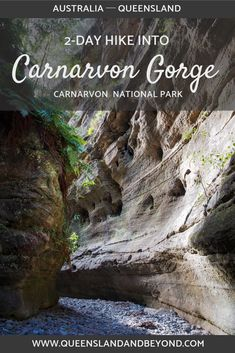 Carnarvon Gorge in Queensland's Outback is a spectacular sandstone gorge and is an amazing hiking destination. It's perfect for an easy overnight hike, especially if you want to explore Boowinda Gorge. Here's Part 2 of our hiking trip. Queensland & Beyond Brisbane, Melbourne, Sydney, Queensland Australia, Western Australia, Australia Travel, Visit Australia, Cairns Queensland, Tasmania