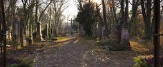 Stille Wiesn - Alter Südfriedhof in München