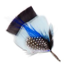 Louise Blue Feather Chicken left side view
