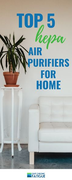 23 Best Natural air purifier images
