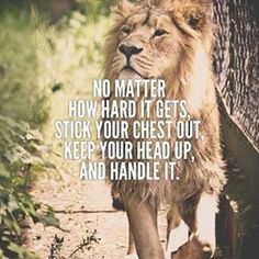 "247 Motivational & Inspirational Quotes ""No matter how long you have traveled in the wrong direction, you can always turn around. You are braver than you Wisdom Quotes, Quotes To Live By, Me Quotes, Qoutes, Motivational Quotes, Inspirational Quotes, Lion Quotes, Animal Quotes, Determination Quotes"