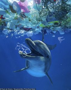 21 Sobering Photos That Show Humanity Has Reached the Peak of Its Indifference Environmental Pollution, Ocean Pollution, Light Pollution, Plastic Pollution, Save Planet Earth, Save Our Earth, Salve A Terra, Marine Debris, Save Our Oceans