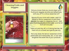 Make your own natural fruit/veggie cleaner with Young Living essential oils. https://www.youngliving.com/signup/?sponsorid=1245601enrollerid=1245601