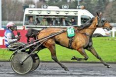 samedi  4  avril  2015   -   vincennes 18 chevaux trot attelé