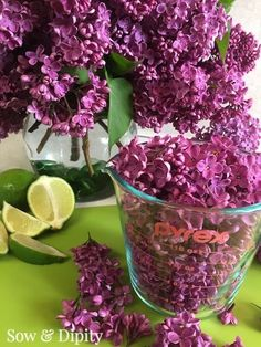 Lilac Cocktail Recipe -
