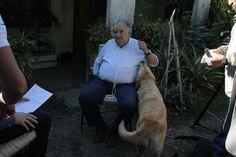 Durante la entrevista compartimos con las mascotas del Pepe