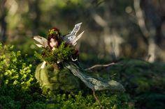 The Moss Maiden — Lavender & Lark