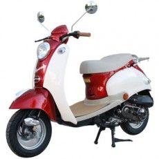 BERMUDA 50cc