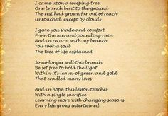 celtic tree of life meaning - Google Search