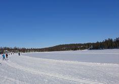 Talvijärven latu on sallittu myös koirille. Rukan Kansainvälinen Hiihtostadion, Talvijärvi, Kuusamo. Beach, Water, Outdoor, Gripe Water, Outdoors, The Beach, Beaches, Outdoor Games, The Great Outdoors