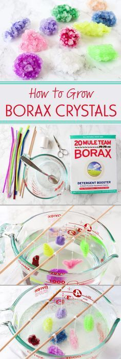 to Grow Borax Crystals Growing Borax crystals is a fun science experiment that you can do easily and cheaply at home!Growing Borax crystals is a fun science experiment that you can do easily and cheaply at home! Kid Science, Cool Science Experiments, Kid Experiments At Home, Science Games, Summer Science, Borax Experiments, Science Education, Science Daily, Science Chemistry