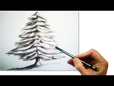(1) How to Draw a Realistic Christmas tree with pencil   #Draw step by step - YouTube
