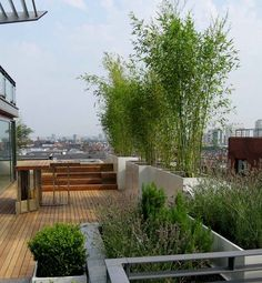 balcony privacy protection bamboo trees planters rooftop deck design