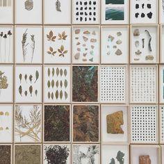 uraganostudio:  DAILY FOCUS /  Herman de Vries / Dutch Pavillon Venice Biennale…