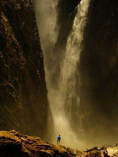Jog Fall, how grandiose is that? Highest waterfall in India