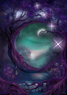Night of Enchantment   www.animalearthessence.com