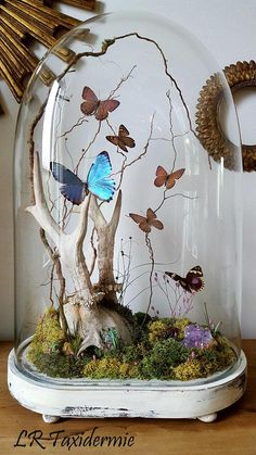 this article is not available - - Cloche Decor, Deco Nature, Deco Boheme, The Bell Jar, Decorated Jars, Renaissance Art, Glass Domes, Dried Flowers, Creative Inspiration