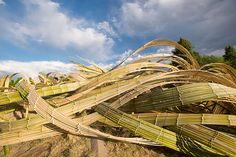 West meets East in these incredible bamboo sculptures by Tetsunori Kawana