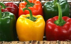 """Dirty Dozen"" – 12 Common Foods We Need to Buy Organic Only Italian Street Food, Sweet Bell Peppers, Key Food, Pepper Seeds, Food Stands, Red Green Yellow, Getting Hungry, Food Festival, Fruits And Vegetables"
