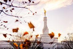 North Carolina Temple - Fall