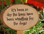 Garden Humor: That is as dry as you can get.