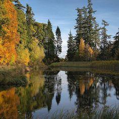 The west lake, Rosehaugh, Scotland. by Nature.Holds.The.Key www.natureholdsthekey.com