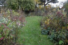the blackberry garden: What sort of a person has a power complex about fl...