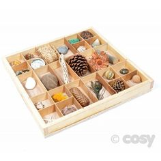 NATURAL ARTEFACTS TRAY - Loose Parts - Early Years - Cosy Direct