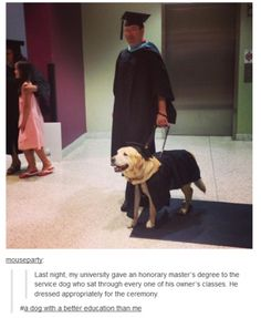 That sad moment when I realized that this dog ha a master's degree and I am barely halfway through my junior year of undergrad...