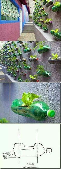 Nice for an herb garden
