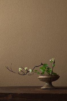 """川瀬敏郎の活ける花が好き花を活けるとは...命を活けること""""花""""という字は""""死""""という字にも似ているhttp://www.shinchosha.co.jp..."""