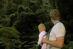 Tsitsikamma National Park Tsitsikamma National Park, Knysna, Wilderness, Activities For Kids, National Parks, Couple Photos, Couple Shots, Children Activities, Couple Photography