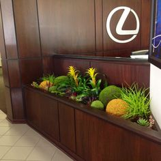 Artificial Plant Designs Year Round