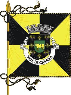 Bandeira de Vale de Cambra