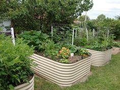 Making Raised Wicking Worm Garden Beds