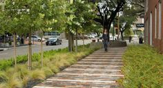 a green street in Houston, illustrated (by: Design Workshop, courtesy of American Society of Landscape Architects)