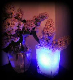 light display centerpices