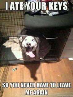 Ah hahaha!!