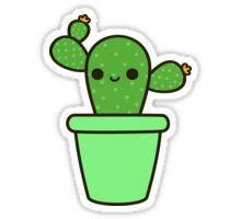 Cute cactus in green pot Sticker