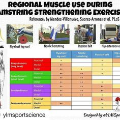 Great #infographic by @ylmsportscience about specific hamstring muscle activation when completing a few exercises. Work that posterior chain to aid in greater force production when recruiting your hamstring muscles for sport!  #education #knowledgeispower #learnsomethingneweveryday #hamstrings #forceproduction #eccentric #concentric #isometric #contraction #muscleactivation #legcurl #nordic #tripleextension #ylmsportscience #strengthening #strengthtraining #posteriorchain  #Repost…