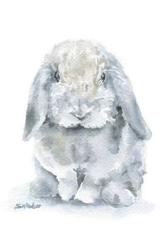 Mini lop Rabbit Watercolor Painting 4 x 6 Giclee by SusanWindsor