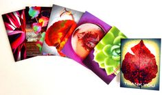 Vibrant Thank You Note Cards NEW ITEM by chromeCHARM on Etsy