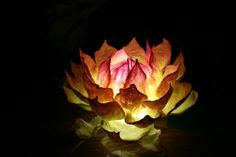 Hand felting wool night lamp Lotus by LSWoolDesign on Etsy